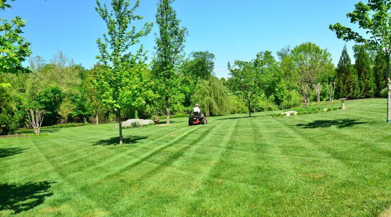 Gyeplazítással a zöldellő kertért